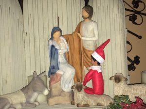 bronco-in-nativity